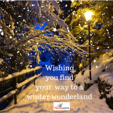 Wishing you a Winter Wonderland